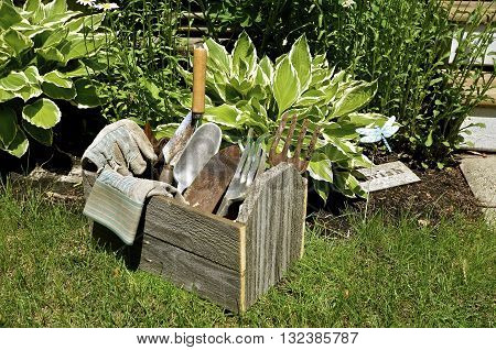 Tools for caring for flower garden includes an old weathered, box, trowels, and spade, and fork.