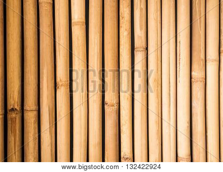 Yellow bamboo fence texture, bamboo background, texture background, bamboo texture