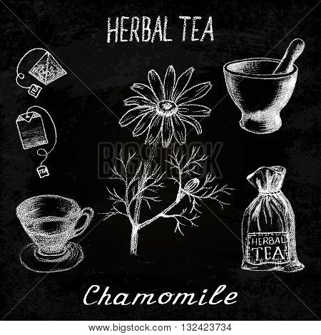 Chamomile herbal tea. Chalk board set of vector elements on the basis hand pencil drawings. Herb chamomile tea bag mortar and pestle textile bag cup. For labeling packaging printed products