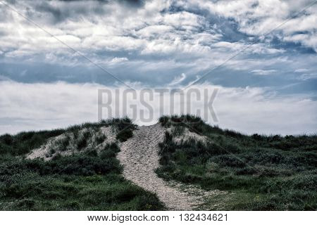 Path through the sand dunes to the beach on the North Sea in Denmark