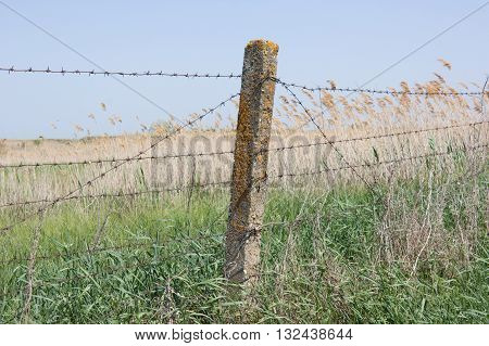 Barbed wire stretched on concrete pillars. The fence