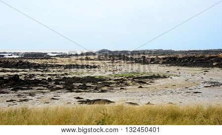 People Walking In The Low Tide Landscape Of Iles De Chausey