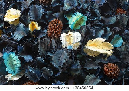 Colorful potpourri of dried flowers for Aroma Ocean