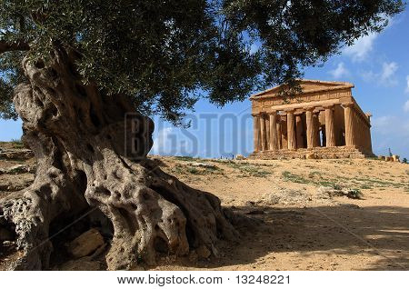 Tempel, Concordia, Agrigento, Tal, Sizilien, Italien