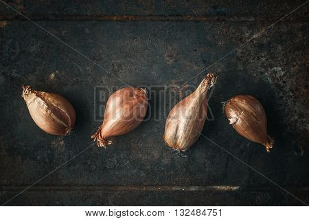 Shallots on the old metal background metal, old, brown,