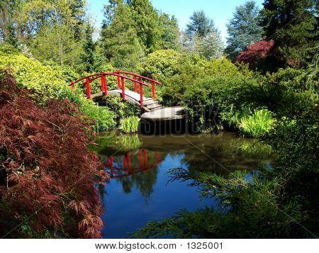Curved Bridge Over Pond