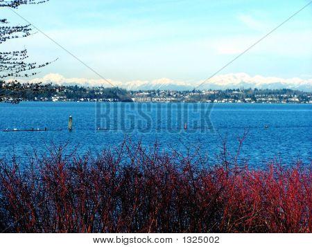 Winter View_Lake & Mtns