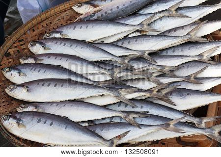 Plenty of fish on the tray in the market for sell