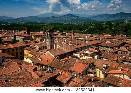 Amazing Sunny View Of Lucca, Italy