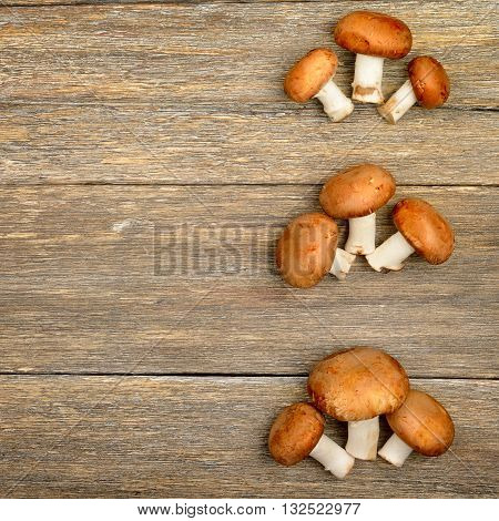 champignon mushrooms on a wooden boards background