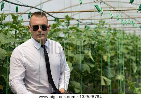 Great plants greenhouse. Proud man, Modern businessman in his greenhouse and feeling confidence