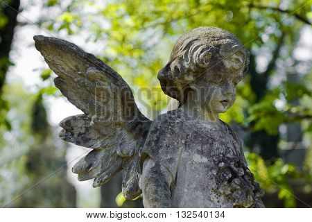 Old cemetery angel sculpture made of stone.  graveyard