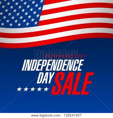 Independence Day Sale banner design template vector illustration