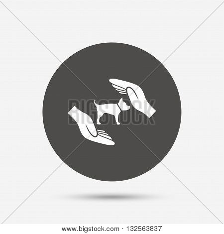 Protection of animals pets sign icon. Hands protect dog symbol. Shelter for dogs. Animals insurance. Gray circle button with icon. Vector
