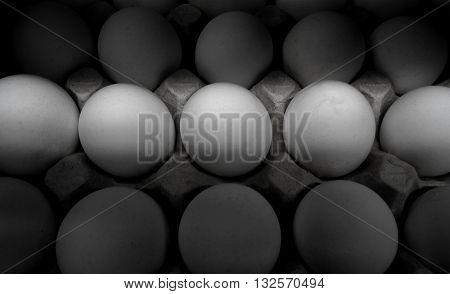 White raw eggs in a tray closeup isolated