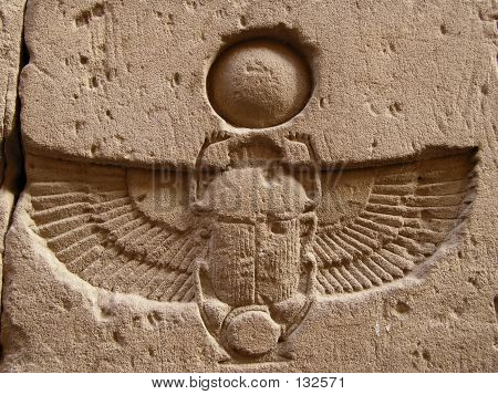 Carved  Scarab