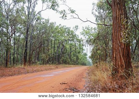 Australian outback bush road on overcast day