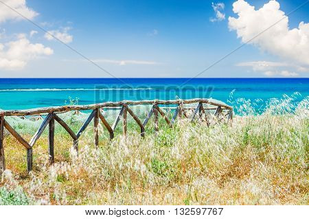 Beautiful Sea Coast With Wild Grasses And Fence.