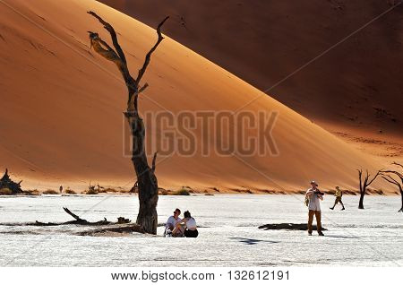 DEADVLEI NAMIBIA - JAN 29 2016: Tourists visit the Deadvlei Sossusvlei. Namib-Naukluft National Park Namibia Africa