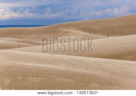 Huge dunes of the desert. Fine place for photographers and travelers. Beautiful structures of sandy barkhans.