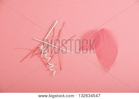 Pink Paper Cuts And Skeleton Leaves