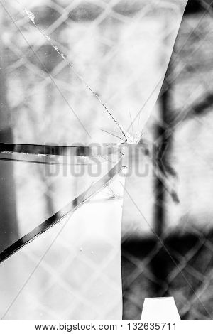 Broken Glass Grayscale