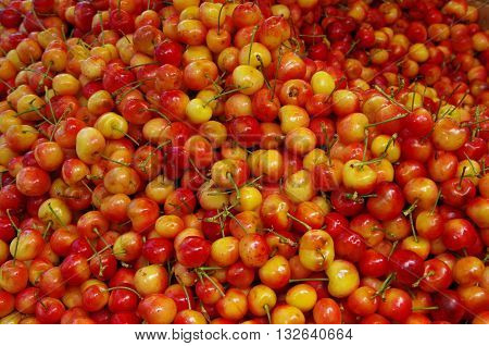 Pile of rainier cherries in market place