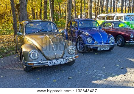MOSCOW, RUSSIA - OCTOBER 12, 2013: Two cars Volkswagen Beetle at the open-air retro and vintage cars exhibition at the Lenin Hills. The exhibition is organized by informal group of retro cars fans.