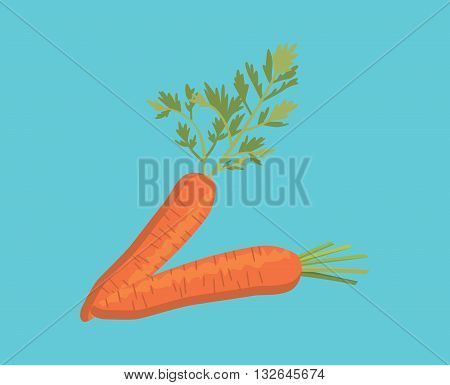carrot two single isolated with blue background vector graphic illustration
