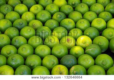 Detail of limes in rows displayed at market