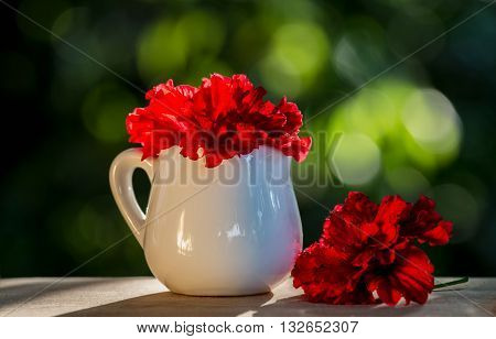 red Hibiscus rosa-sinensis flower in earthenware Natural green background