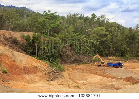 Deforestation environmental problem: destruction of rainforest to make way for oil palm plantations