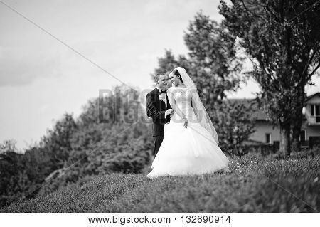 Gorgeous Wedding Couple On The Hill, B&w Photo