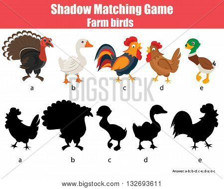 Shadow matching children educational game. Find the right shadow task for kids. Find the correct shadow for farm birds
