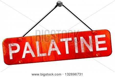 palatine, 3D rendering, a red hanging sign