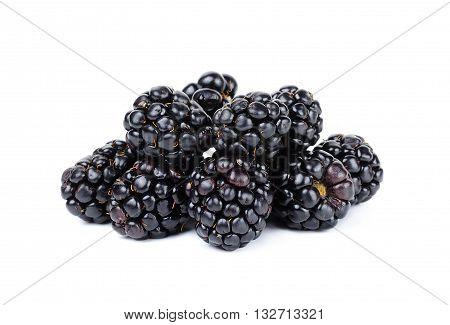 Blackberry Isolated On White Bakcground