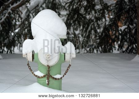 Green Fire Hydrant Covered In Snow With A Tree In The Background