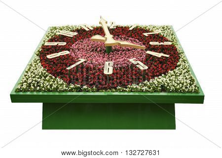 Flower clock with a dial with arrows on a white background