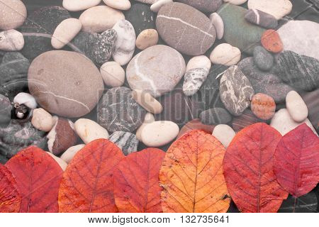Autumn leaf in the water during the rain as background texture