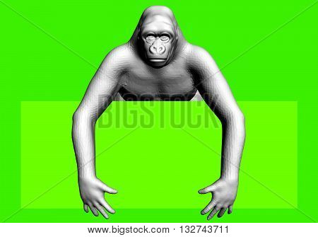 Vector illustration template with polygonal gorilla. 3D.