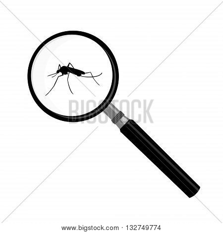 Vector illustration mosquito malaria in magnifying glass zoom. Magnifier insect