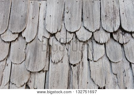 Texture of old shingle Roof top view