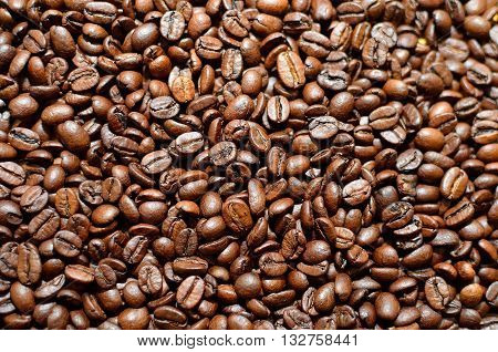 Lots of recently roasted coffee beans found in the coffee factory.
