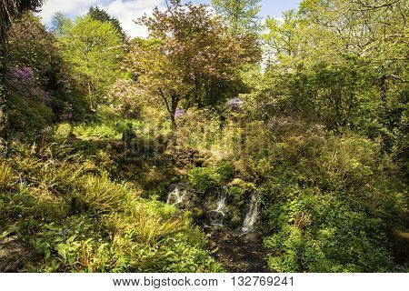Beautiful Summer landscape image of stream flowing over rocks in waterfall in countryside