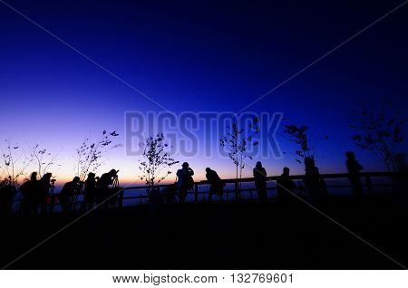 The people and tree silhouette at viewpoint