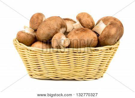 Mushrooms Champignons In Basket