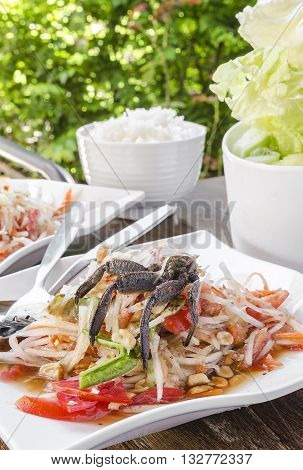 Papaya Salad or Som Tum - Thai Style with crab