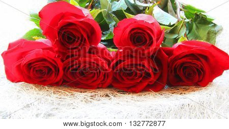 Red rose lying on a white surface