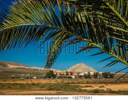 Landscape around La Oliva, Fuerteventura,  Canary Islands, Spain
