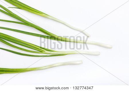 Green fresh onion stalks on white background
